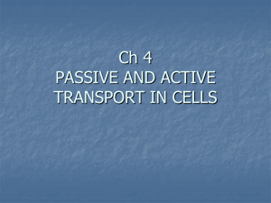 PASSIVE AND ACTIVE TRANSPORT IN CELLS