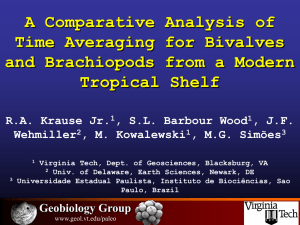 A Comparative Analysis of Time Averaging for Bivalves