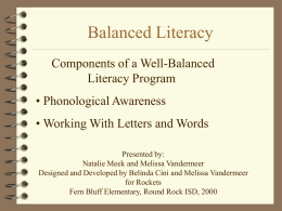 Literacy Instruction for the Primary Student