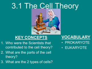 The Cell Theory - staeger science