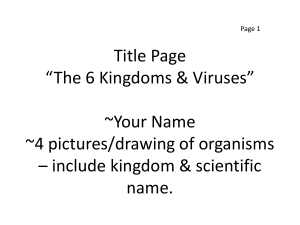 4 pictures/drawing of organisms * include kingdom & scientific name.