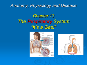 Health Sciences & Occupations Anatomy, Physiology and Disease