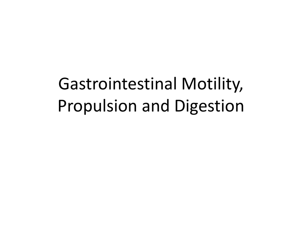 Gastrointestinal Motility Propulsion And Digestion