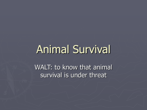 Animal Survival - Primary Resources