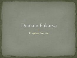 Domain Eukarya - Cloudfront.net