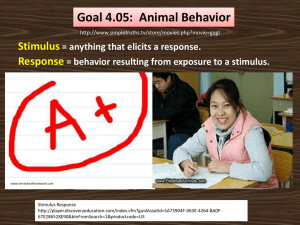 Animal Behavior PPT