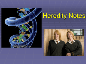 Heredity Notes - Madison County Schools