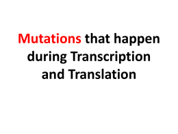 Mutations that happen during Transcription and Translation