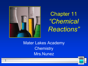 Chapter 11 Chemical Reactions - Mater Academy Lakes High School