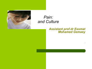 Pain: and Culture