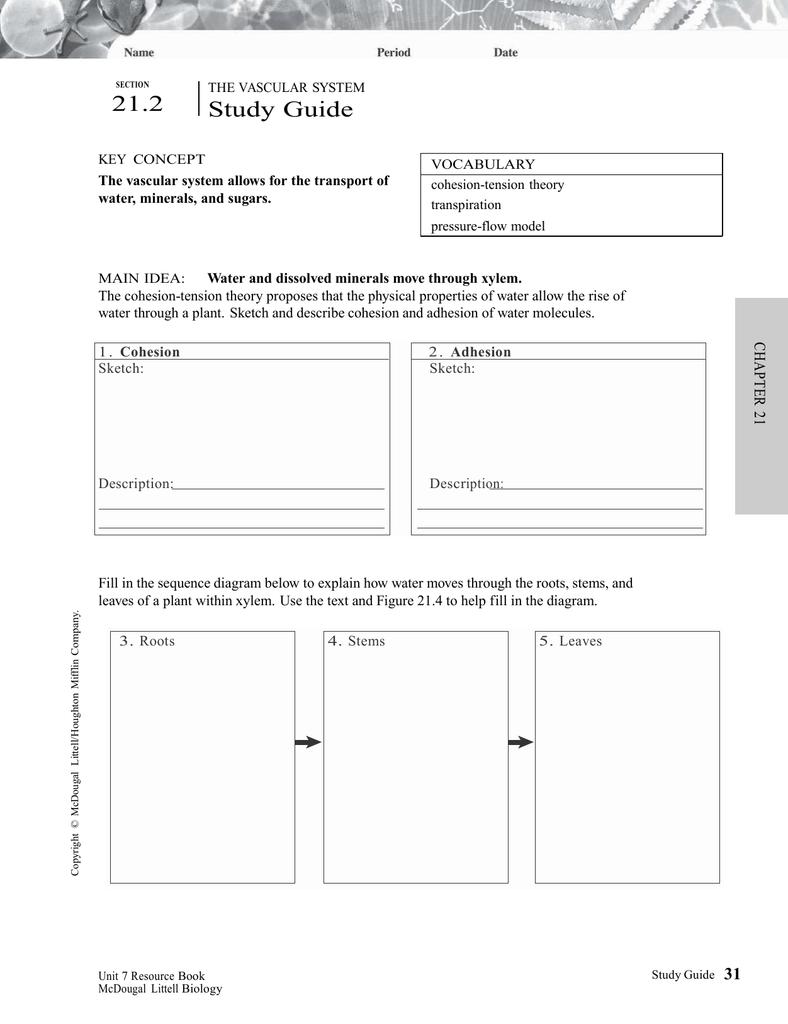 document rh studylib net The Pigman Study Guide Answers Antigone Study Guide Answers
