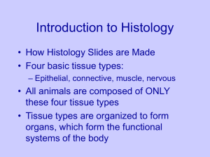 Histology Overview Reduced