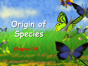 Origin of Species Chapter 24