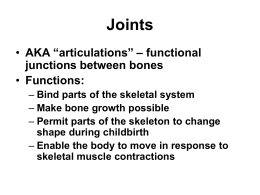 Joints and Joint Movements