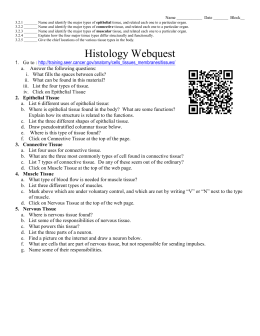 Histology Webquest