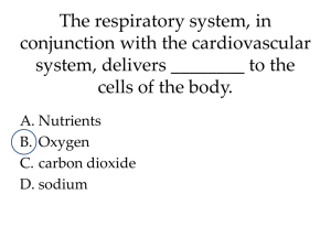 The respiratory system, in conjunction