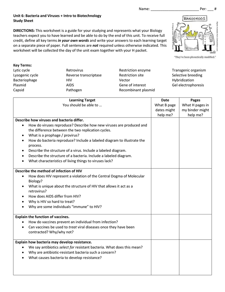 Name Per Unit 6 Bacteria and Viruses Intro to – Virus and Bacteria Worksheet