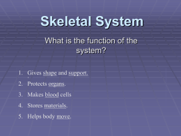 Study Guide for human body unit-all systems