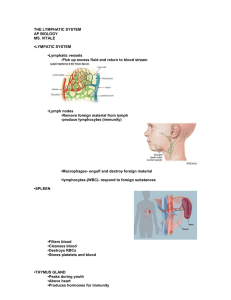 THE LYMPHATIC SYSTEM AP BIOLOGY MS. VITALE •LYMPATIC
