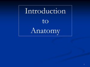 Introduction to Anat..