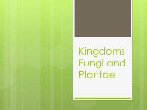 Kingdoms Fungi and Plantae