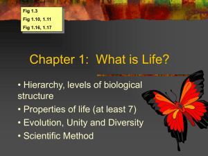 Chapter 1: What is Life?