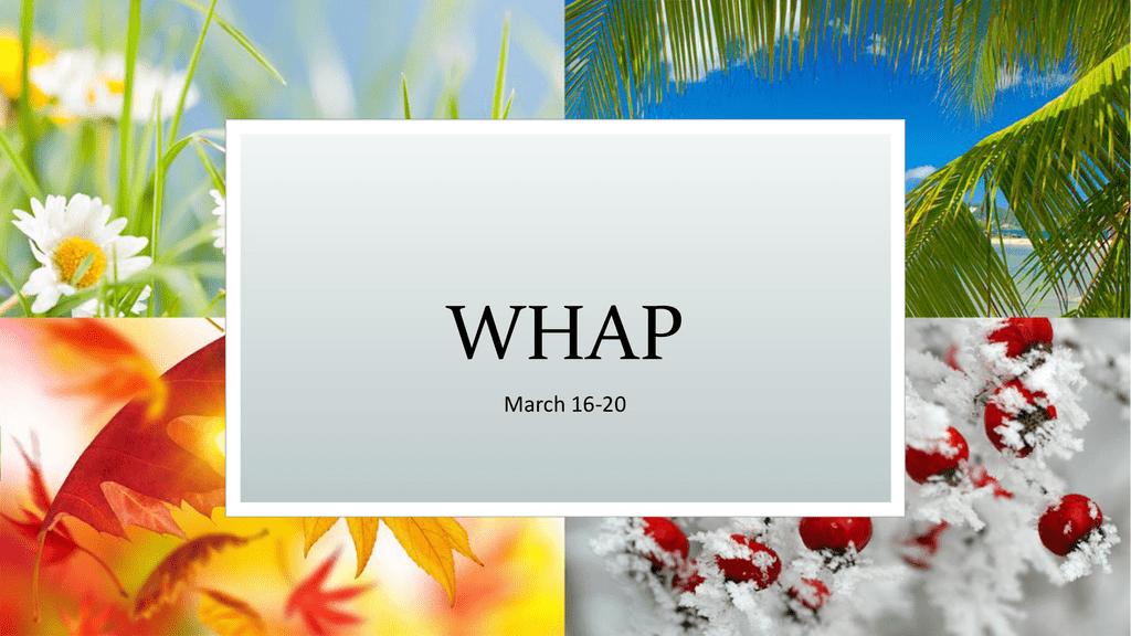 File - AP World History (WHAP)