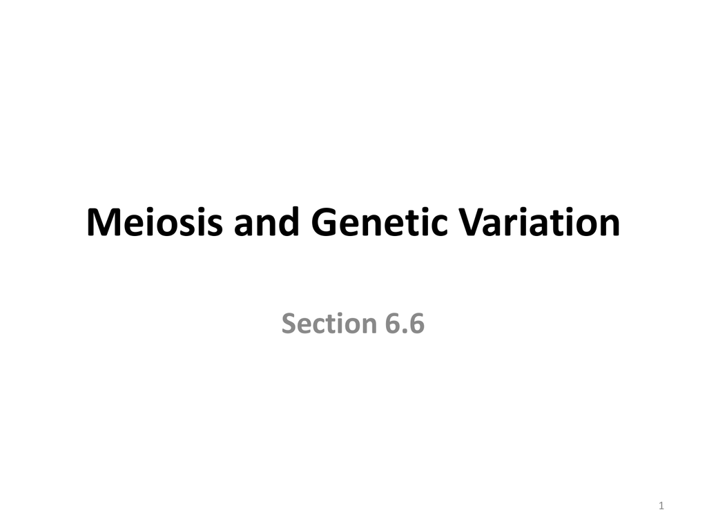 Section 66 Meiosis And Genetic Variation