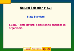 Natural Selection Notes (15.3)