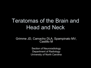 Teratomas of the Head and Neck