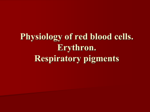 01 Physiology of red blood cells. Erythron. Respiratory pigments