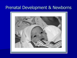 5/22: Prenatal & newborn development