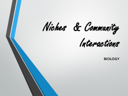 Niches & Community Interactions PPT