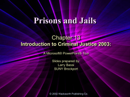 Introduction to Criminal Justice 2003
