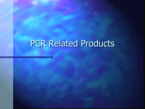 PCR Related Products