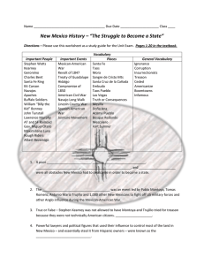 "(Introduction) Worksheet – ""The Struggle to"