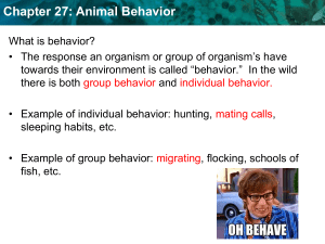 Chapter 27: Animal Behavior