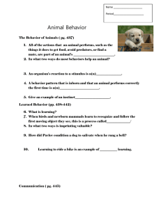 Name Period_____________________ Animal Behavior The