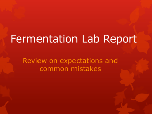 Fermentation Lab Report - Rebekah Lea Zemple