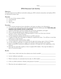 Dna Structure And Replication Worksheet Free Worksheets Library ...