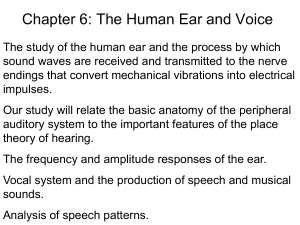 Ear and voice part 1