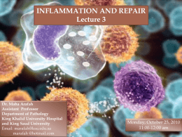 L3-Inflammation