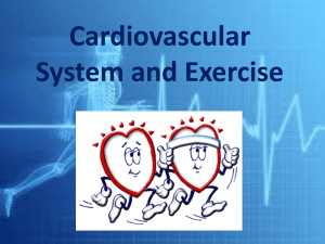 Cardiovascular System and Exercise