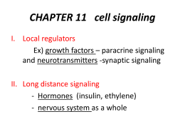 CHAPTER 11 cell signaling