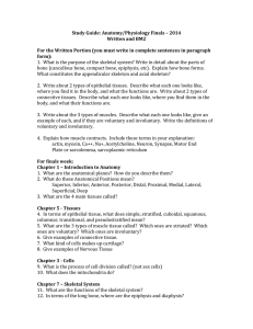 Study Guide: Anatomy/Physiology Finals – 2014 Written and BM2