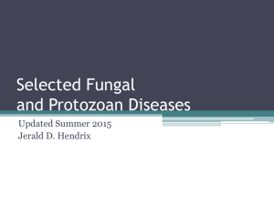 Selected Fungal, Protozoan, and Parasite Diseases