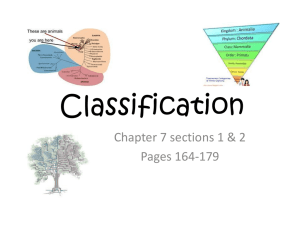 Classification - My Teacher Pages
