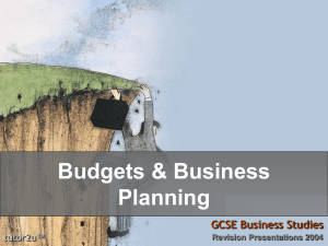 Budgets & Business Planning