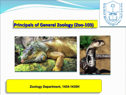 Principals of General Zoology (Zoo-103)