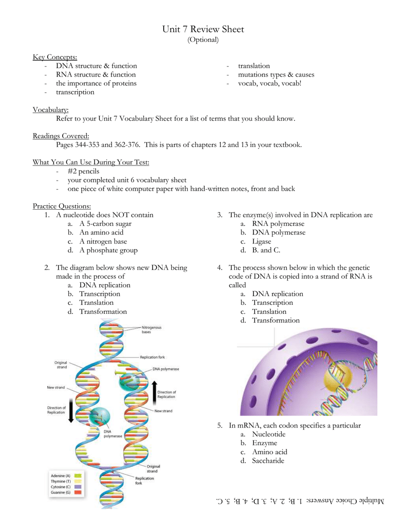 Unit 7 Review Sheet (Optional) Key Concepts: DNA structure